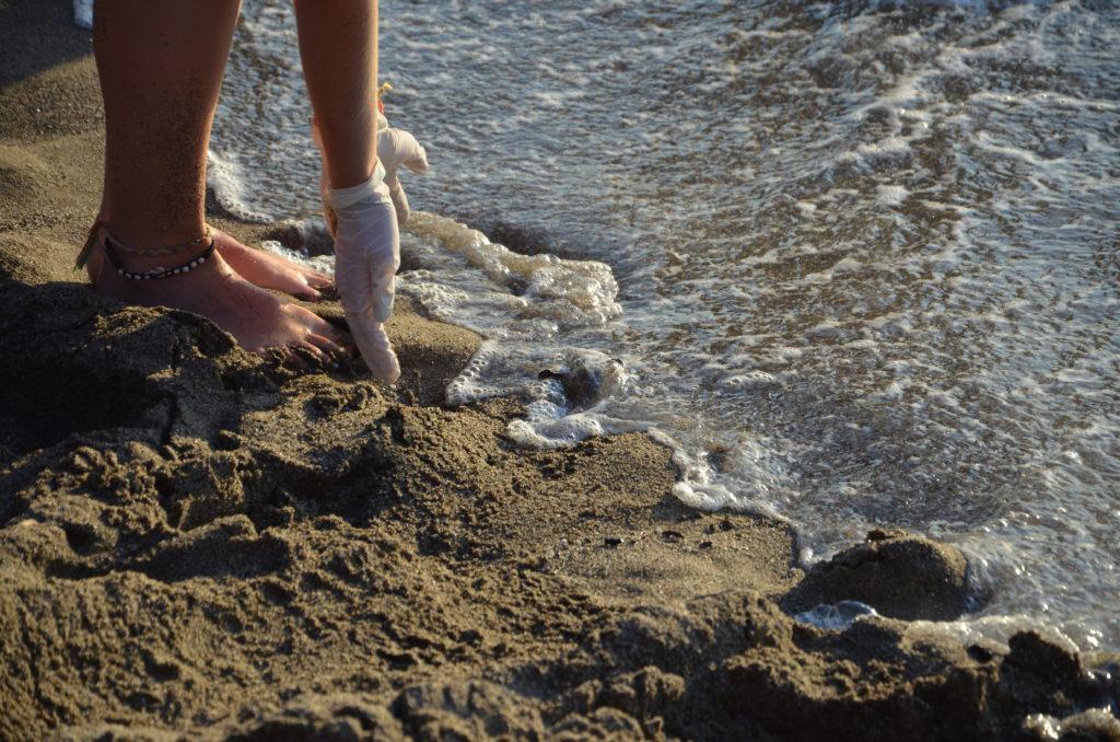 Baby-Meeresschildkröte wird von der Welle abgeholt
